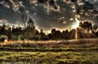 Sonnenuntergang über Weener (Ostfriesland)