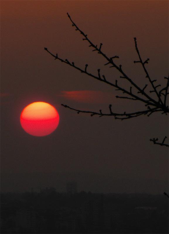 Sonnenuntergang über Weinstadt