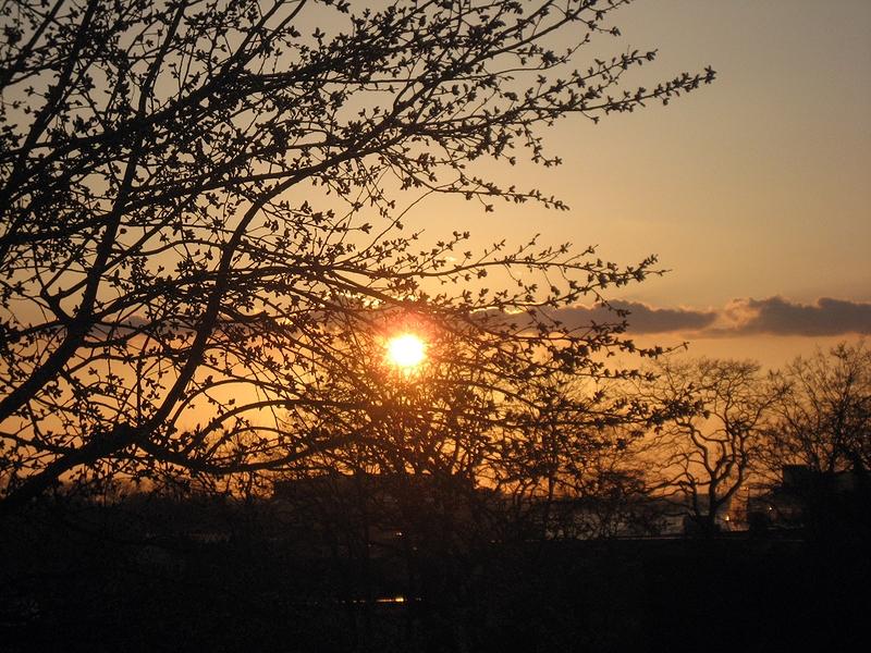 Sonnenuntergang von meinem Balkon aus betrachtet... :-)