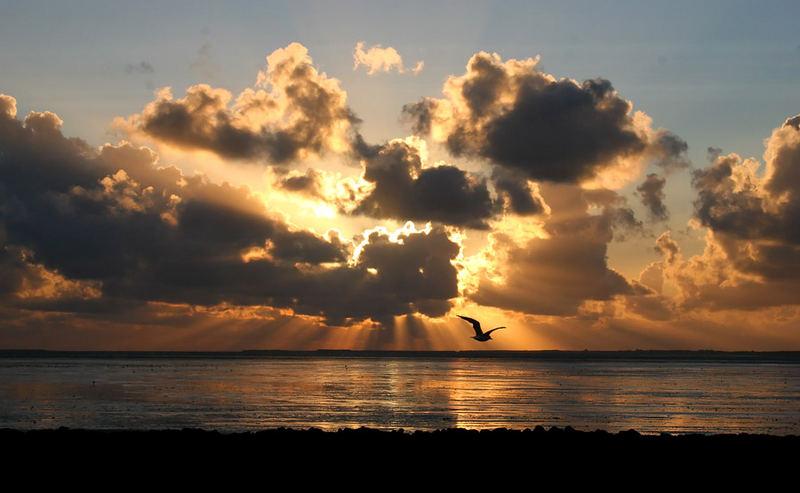 Sonnenuntergang vor Hooksiel
