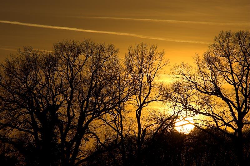 Sonnenuntergang(#1)