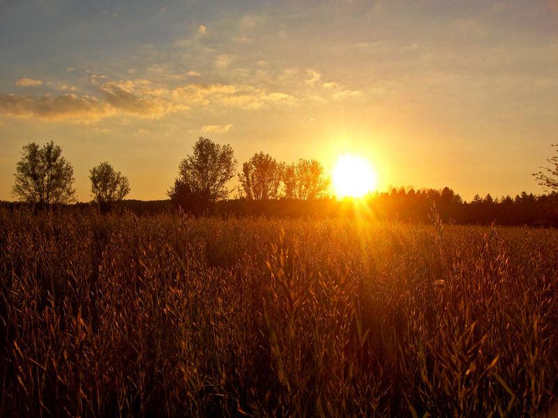 Sonnenuntergang@Bobingen