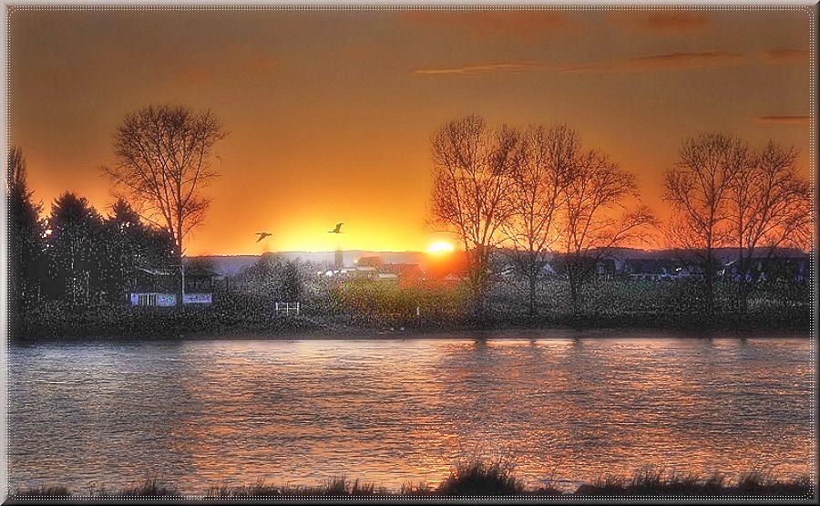 Sonnenuntergangsblick über den Rhein
