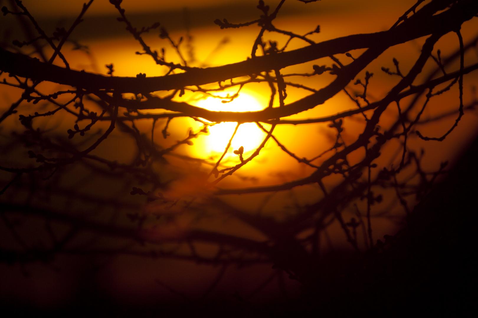 Sonnenuntergangsspiele