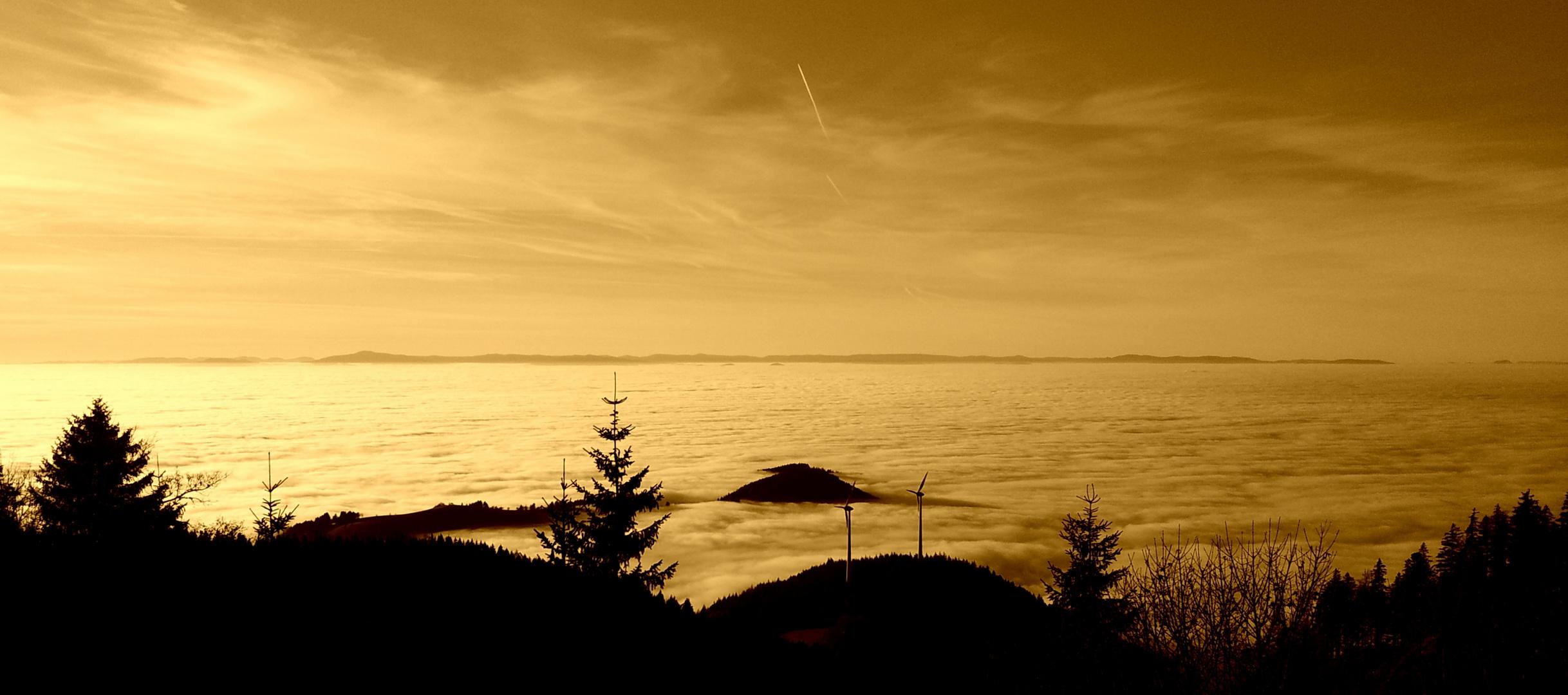 Sonnenuntergangsstimmung auf dem Schauinsland