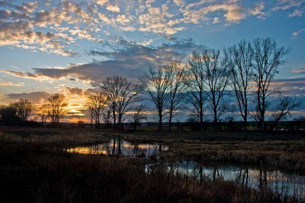 Sonneuntergang am Biotop 2