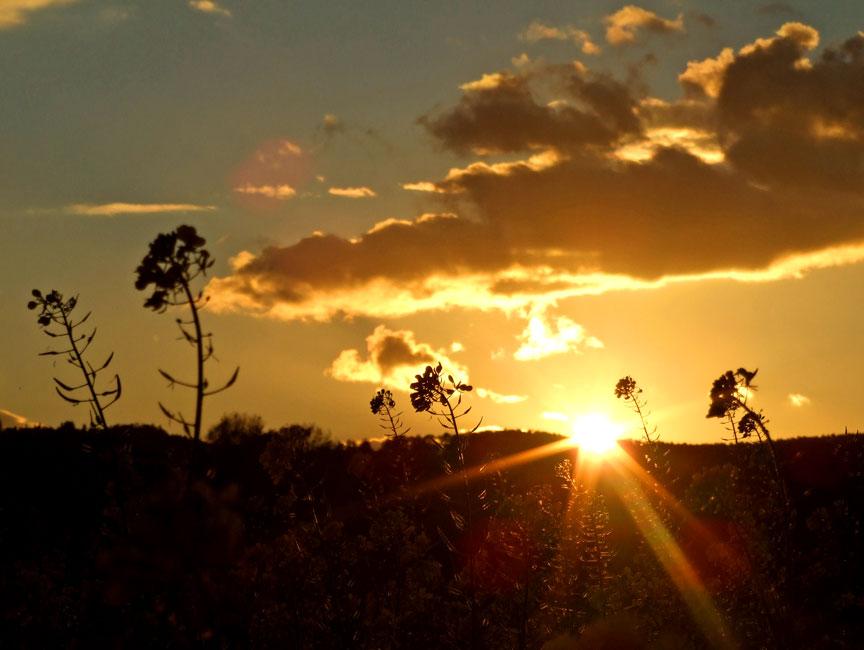 Sonneuntergang im Herbst