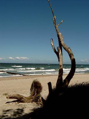sonne,wind und me(h)er ...