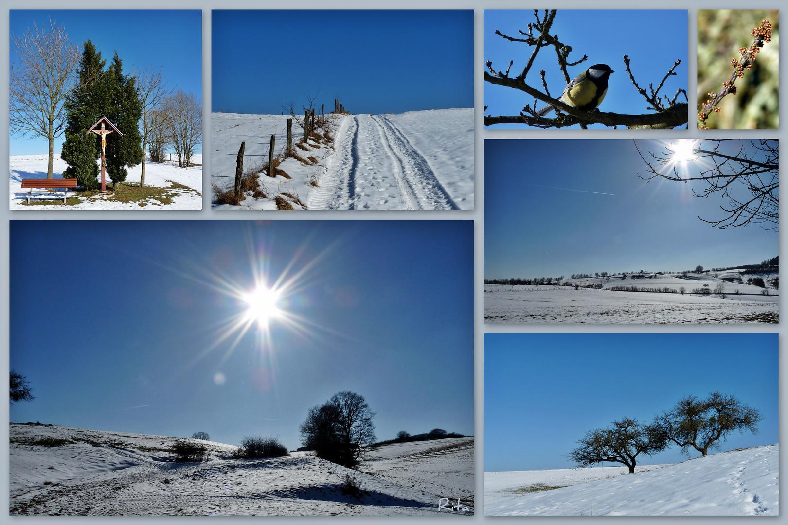 sonnige Winterimpressionen...