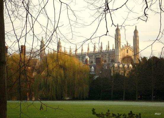 Sonniger, eiskalter Tag in CAMBRIDGE