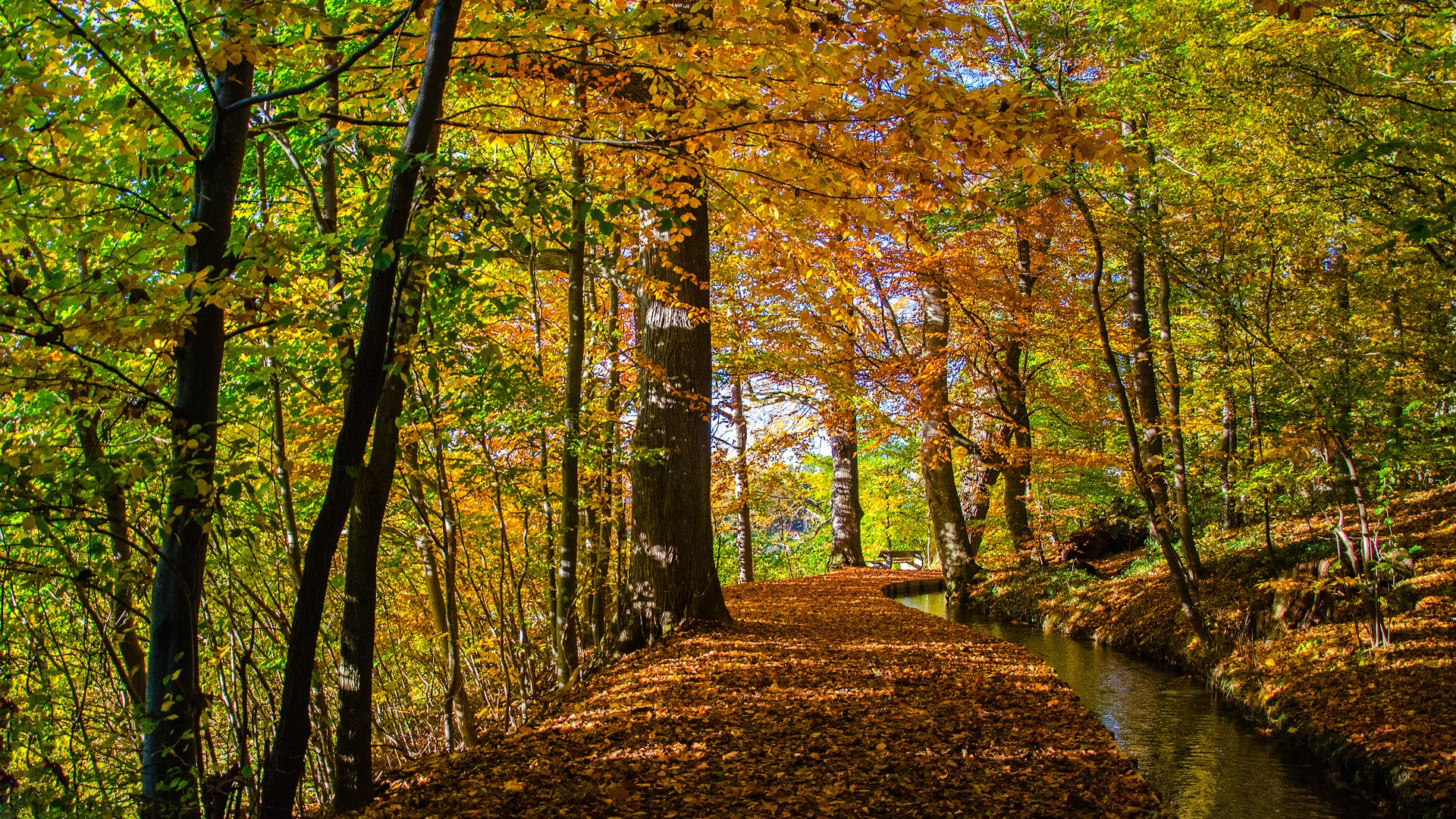 Sonniger Herbsttag