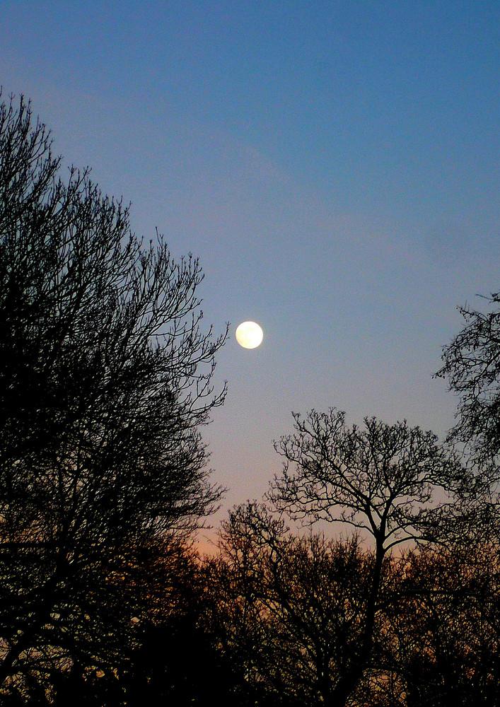 """""""sonniger"""" Mond"""