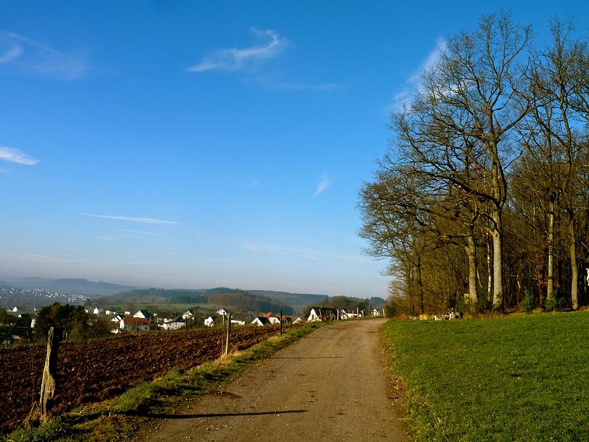 Sonniger Sauerland-März-Morgen