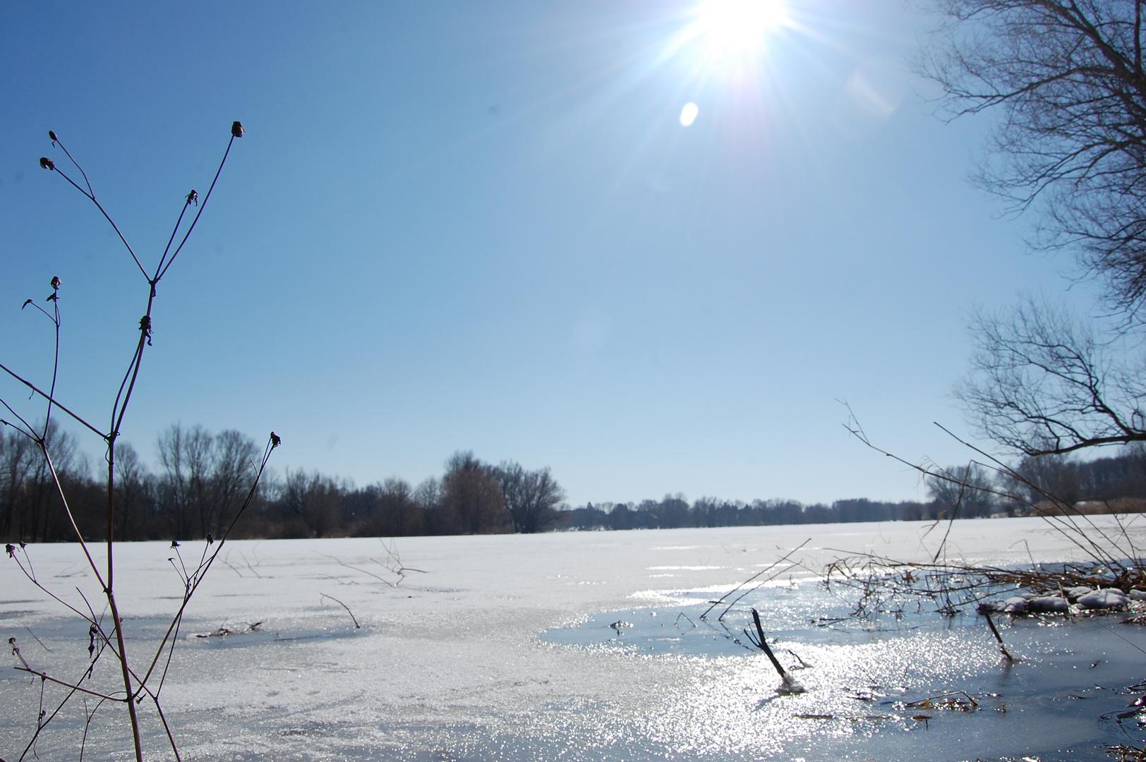 sonniges Winterbild