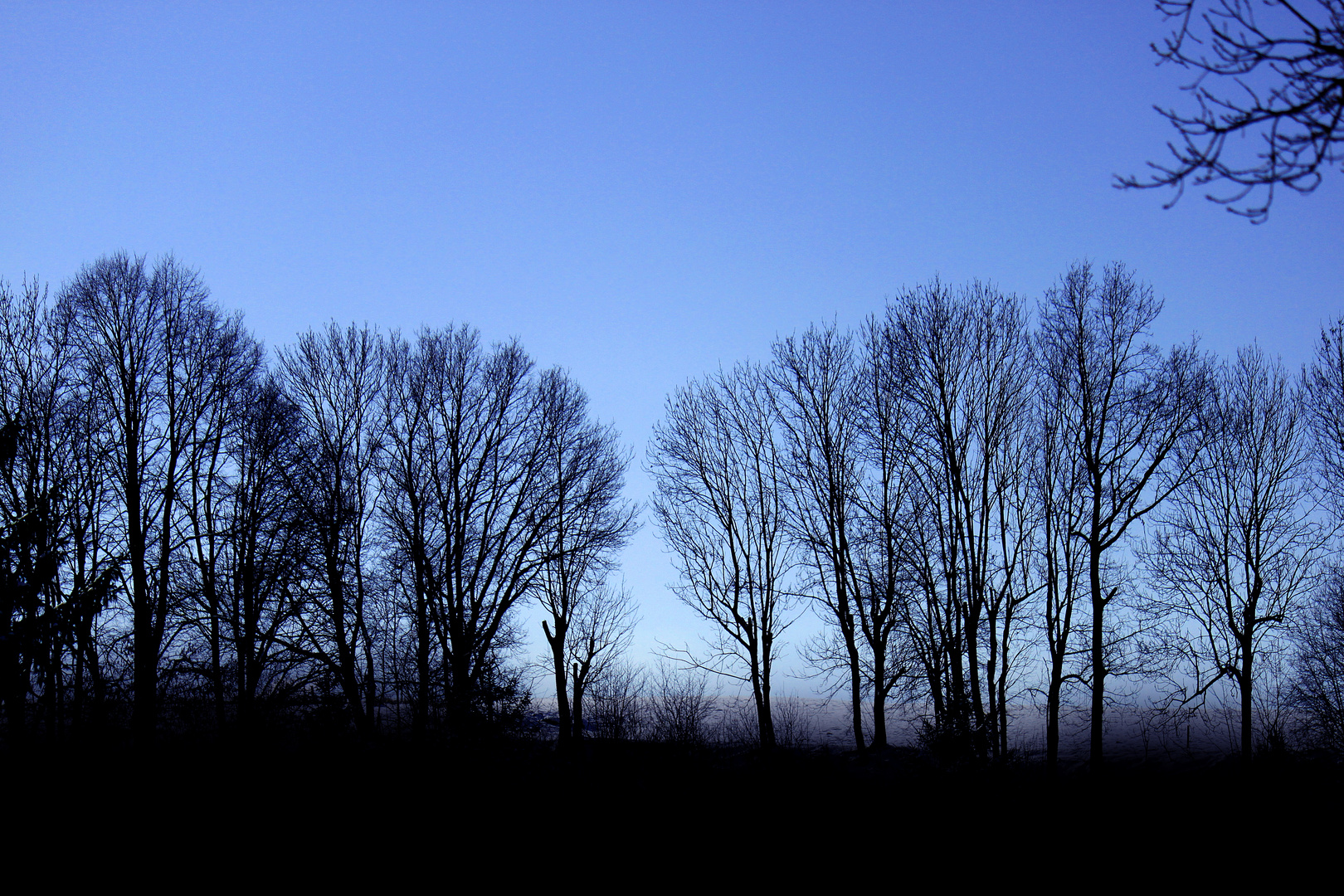 Sonntag Morgen - blau