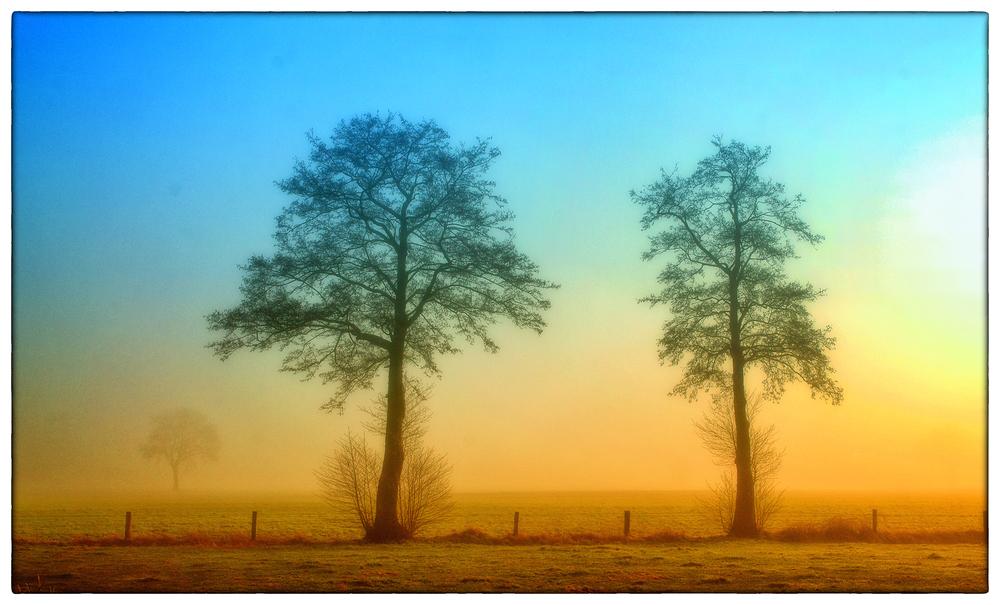 Sonntag-Morgen-Nebel