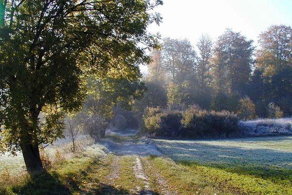 Sonntagmorgen nach dem ersten Frost