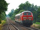 Sonntags Diesel (4)