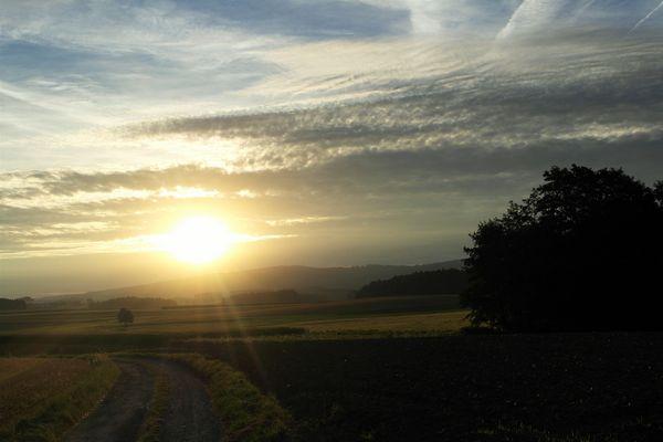 Sonntags :-)-Sonnenstrahlen über Feld und Flur