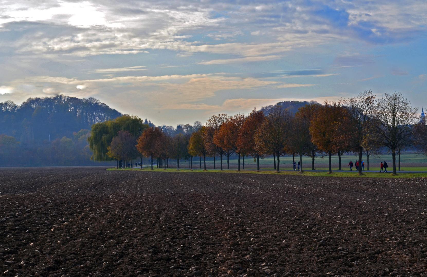 Sonntagsspaziergang im November