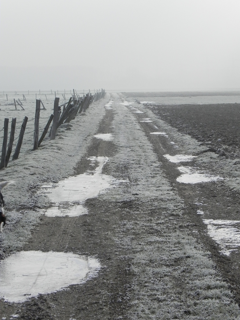 Sonntagsspaziergang im Winter