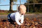 ...sooooo viele Blätter zum Spielen
