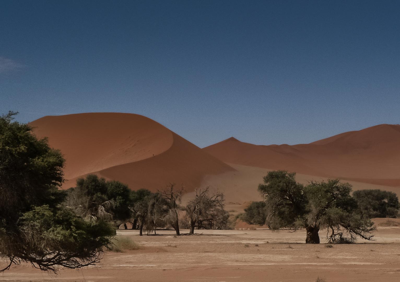 Sossusvlei (2) - Namibia