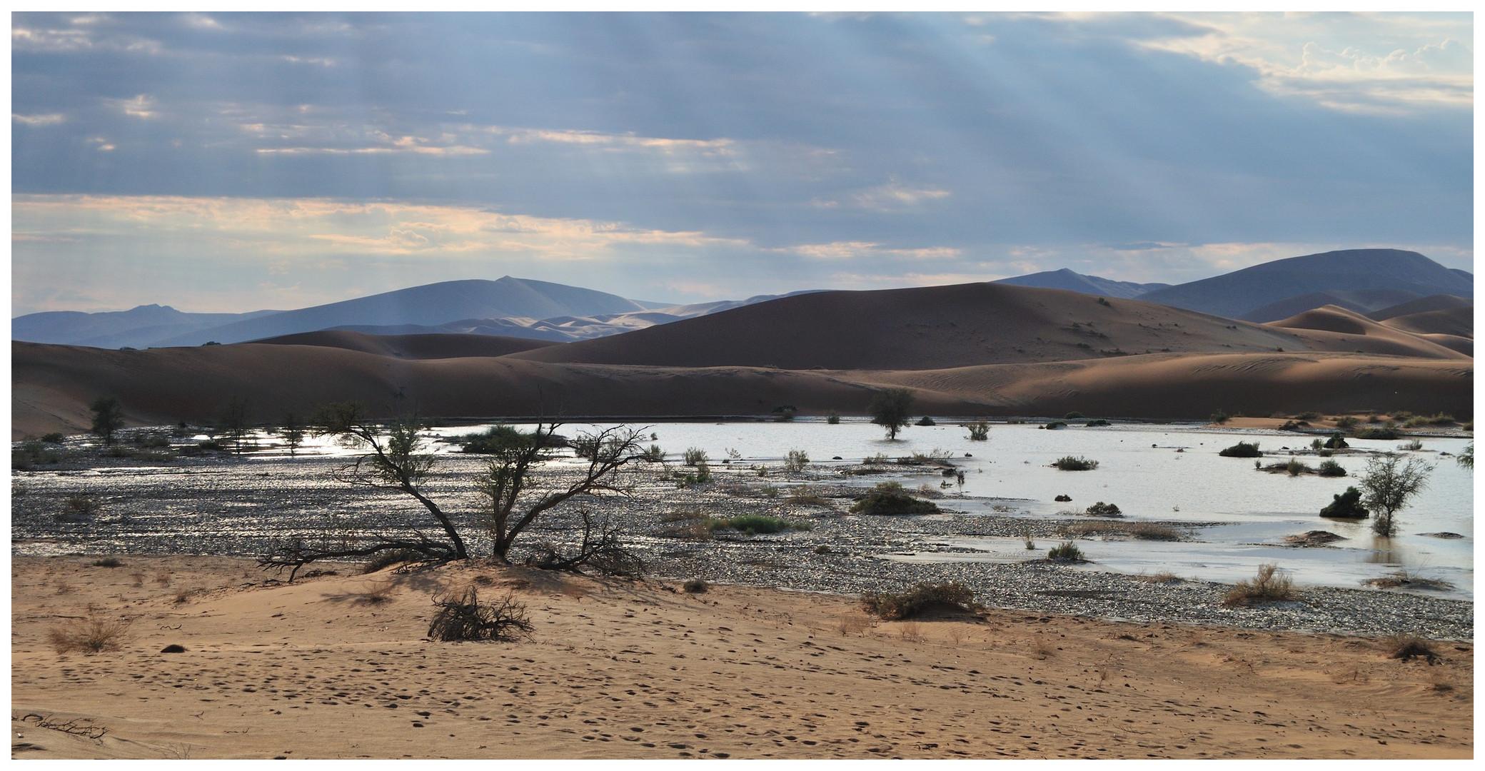 Sossusvlei in der namibischen Wüste
