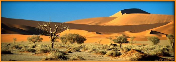 Sossusvlei/Namib