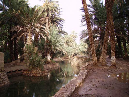 source bleue Maroc