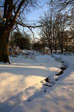 Sous la neige aussi c'est exceptionnel !