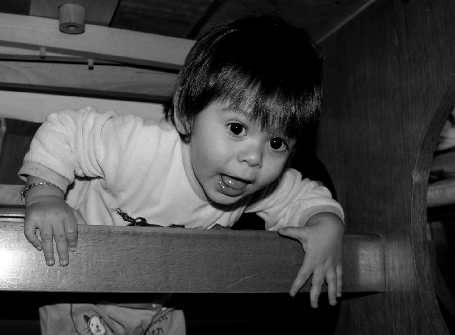 Sous la table...Noé