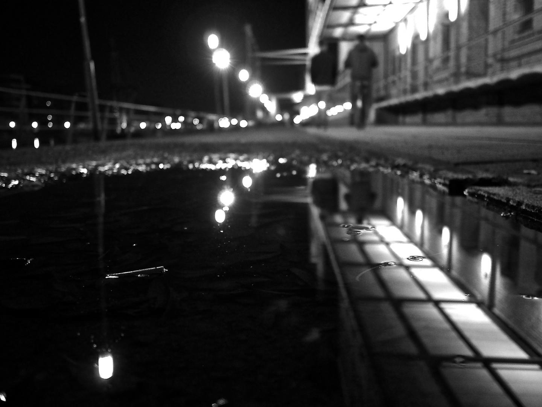 Spät am Hafen #1