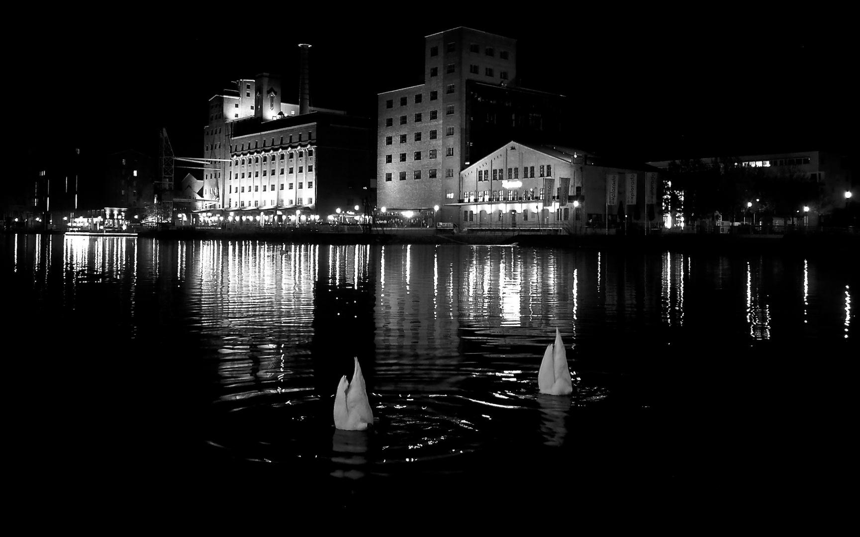 Spät am Hafen #3
