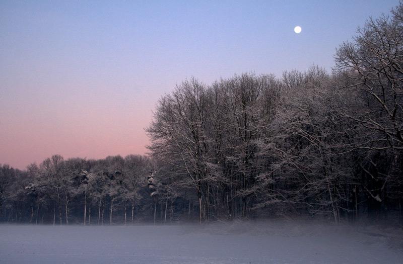 Spät im Schnee..