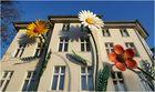 Später aber heftiger Frühlingsbeginn in Berlin