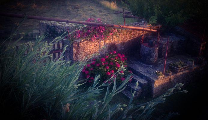 Spätes warmes Licht auf dem schönen alten Garten