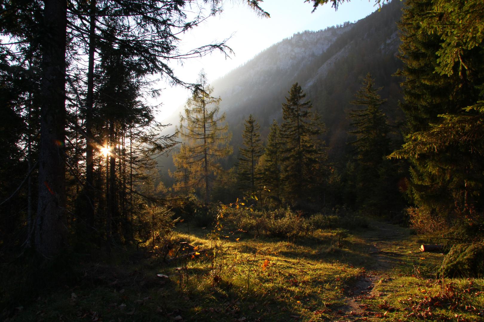 Spätherbst im Chiemgau