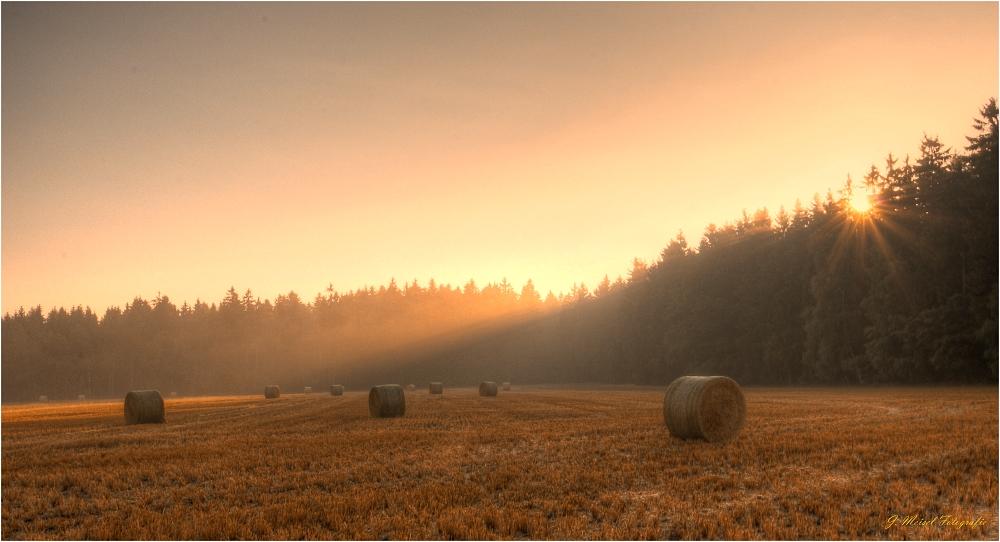 Spätsommer  Spätsommer Foto & Bild | landschaft, Äcker, felder & wiesen, natur ...