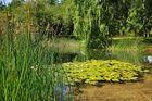 Spätsommer im Britzer Garten....