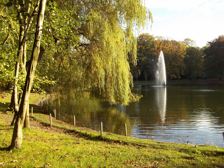 Spätsommer im Kaisergarten