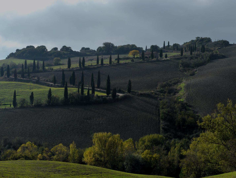 Spätsommerabendlicht - Toscana