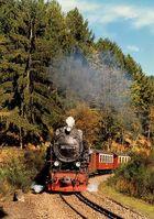 Spätsommerlicher Zug am Thumkuhlenkopf