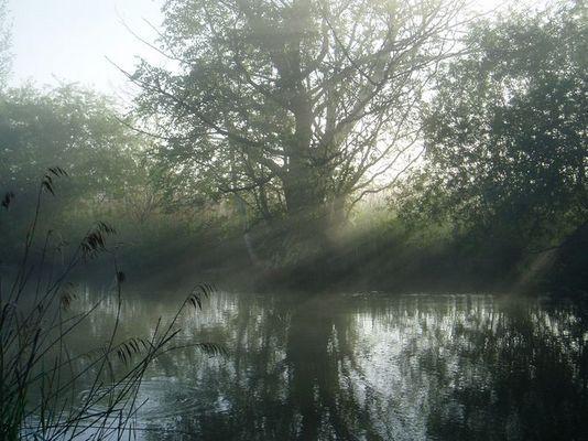 Spätsommermorgen am Fluß