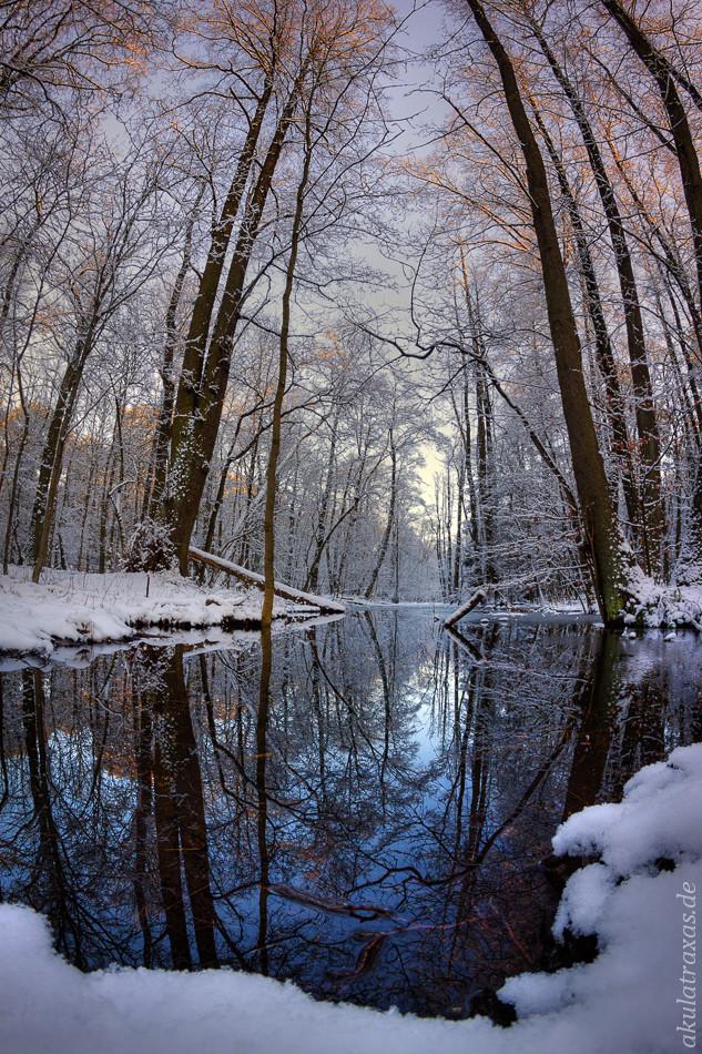 Spandau Forest