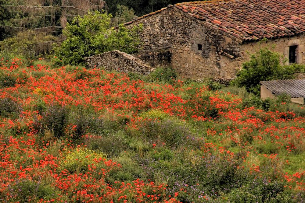 Spanien, irgendwo bei Platja d Aro