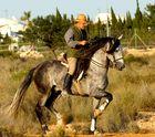Spanier beim Ausreiten in Andalusien