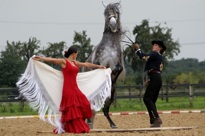 Spanische Tänzer..........und Tänzerinnen!