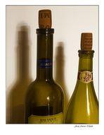 Spanish wines. Rias Baixas (Albariño)