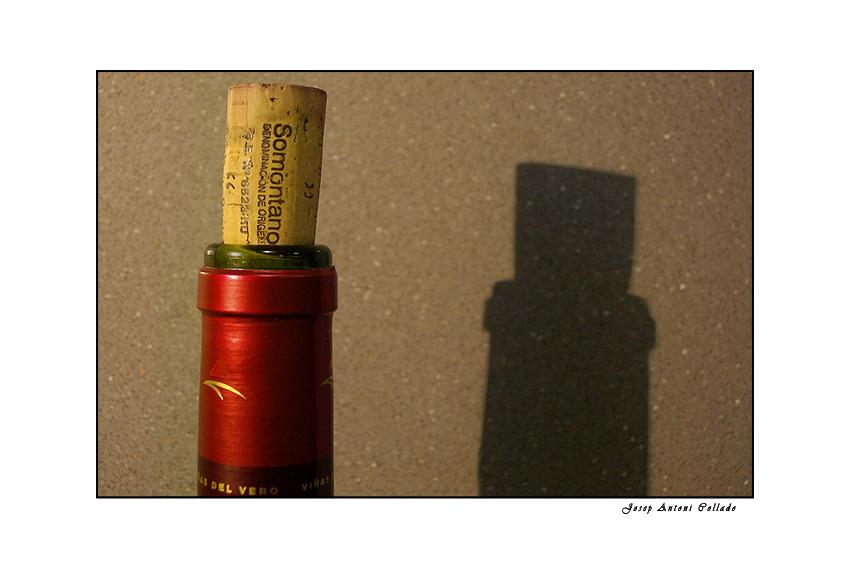 Spanish wines. Somontano